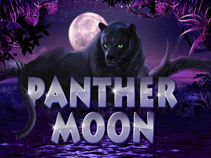 Play Panther Moon Slots Online at Casino.com South Africa