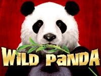 Wild Panda slots machine