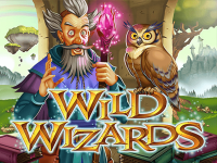 Wild Wizards slots machine