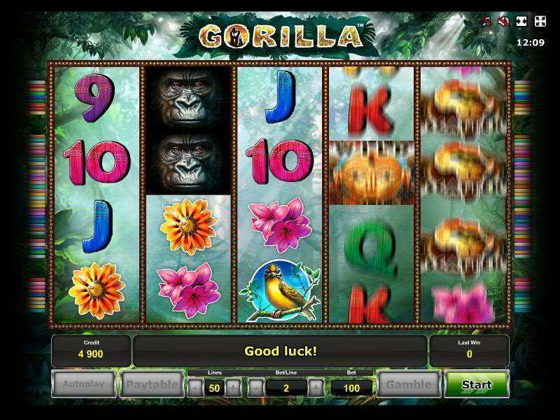 Gorilla Slot Machine Online ᐈ Novomatic™ Casino Slots