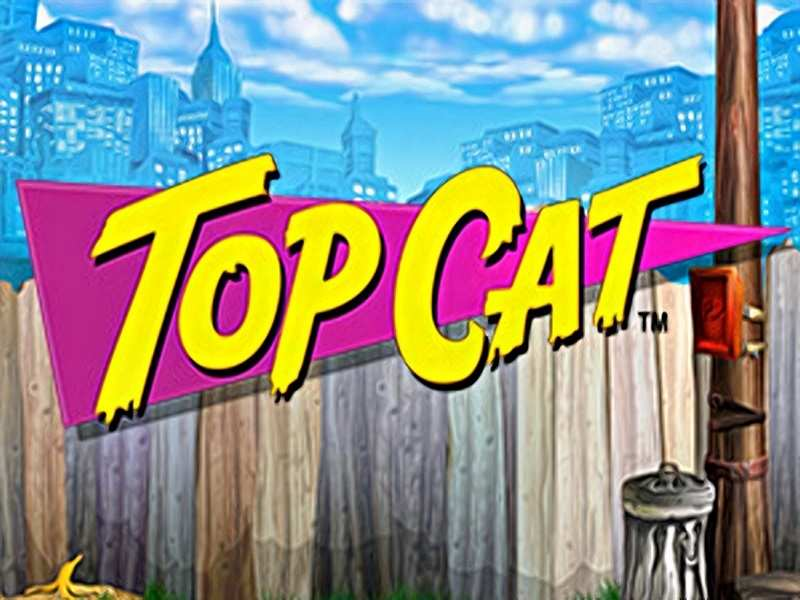 Top cat video slot game blueprint gaming for free play for money play free malvernweather Choice Image