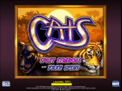 Cats Slot Game by IGT