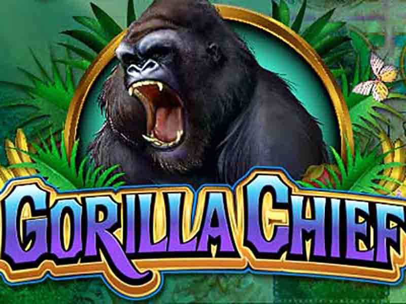 Gorilla Chief Slots Online and Real Money Casino Play