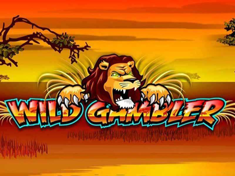 Play Wild Gambler Slots Online at Casino.com NZ