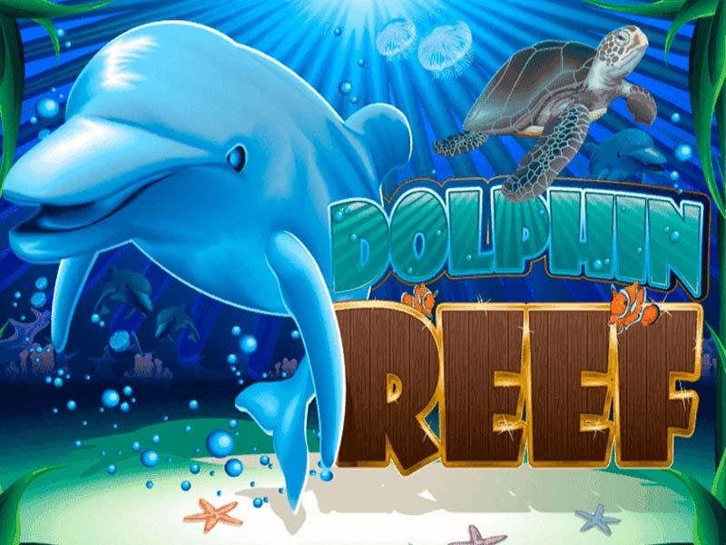 Dolphin Reef slots machine logo