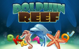 100 Spins on Dolphin Reef Slot for the 1st Deposit in Red Stag Casino