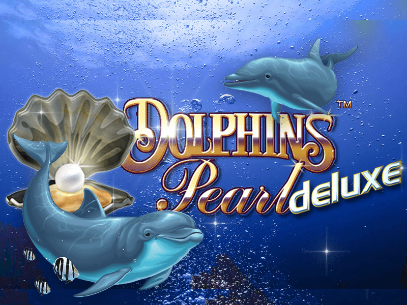Dolphins Pearl Miniclip