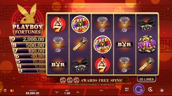 Arena Of Gold Slot Game & Bonus Inside Casino Slot Machine