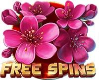 Shogun Of Time Slot Free Spins Symbol