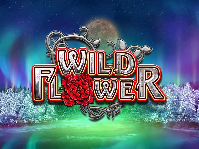 Wild Flower Slot Online