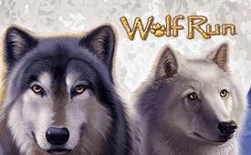 Casumo £300 + 20 No Deposit Free Spins on Wolf Run